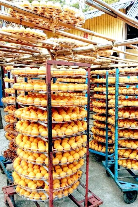 黃澄澄的柿餅讓人食指大動。/玩全台灣旅遊網特約記者隱月攝