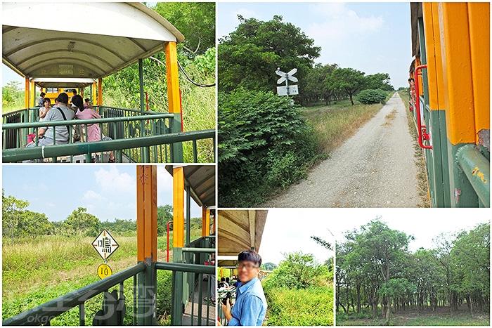 五分車搖搖晃晃帶著轟隆聲行駛在鐵道上,坐在復古座椅欣賞沿途風景,好自然好放鬆。/玩全台灣旅遊網特約記者阿辰攝