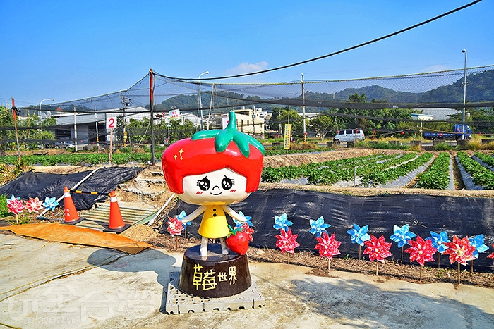 草莓世界/玩全台灣旅遊網特約記者小玉兒攝