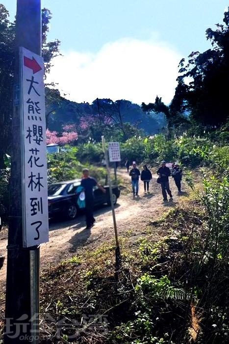 順著指標往前步行便可以抵達三峽熊空櫻花林。/玩全台灣旅遊網特約記者隱月攝