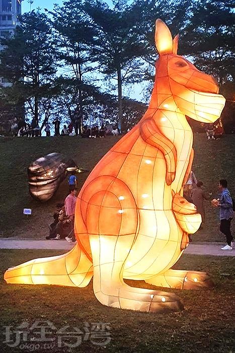 戽斗袋鼠帶著小袋鼠蒞臨燈會了/玩全台灣旅遊網特約記者隱月攝