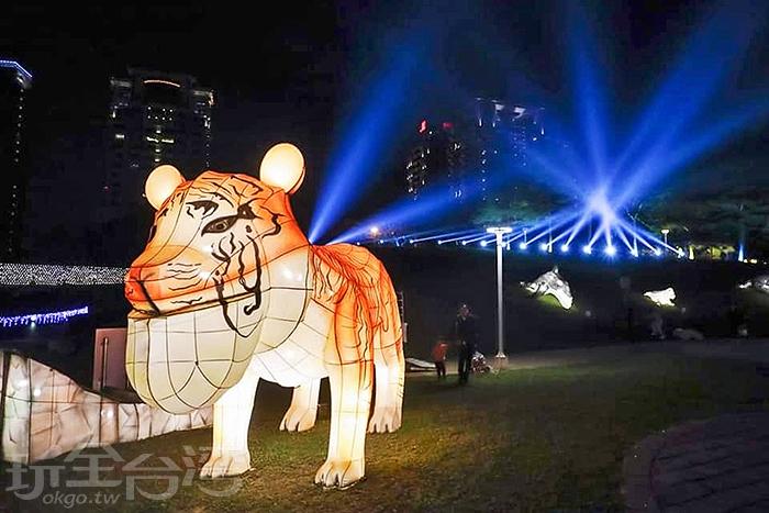 兇猛的老虎也變身成為戽斗動物了/玩全台灣旅遊網特約記者隱月攝