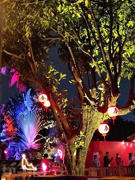樹上也有許多傳統燈籠。/玩全台灣旅遊網特約記者隱月攝