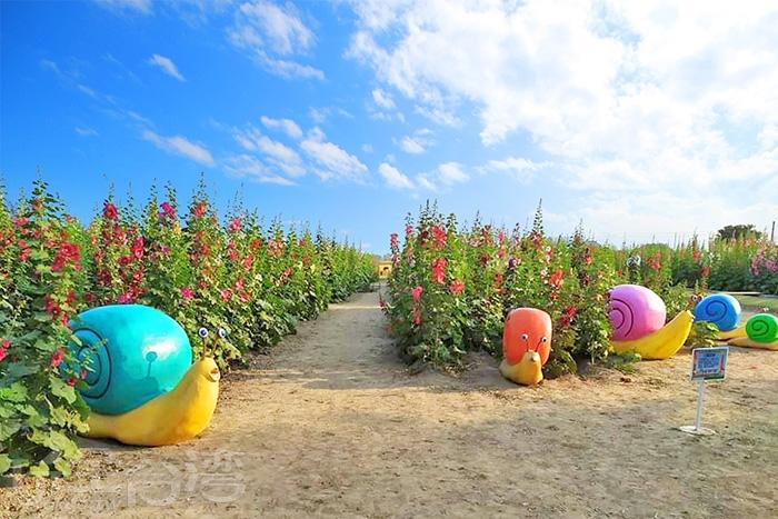 五顏六色的小蝸牛。/玩全台灣旅遊網特約記者洋甘菊小姐攝