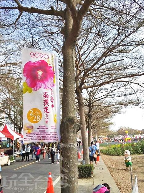 一年一度的學甲蜀葵花文化節。/玩全台灣旅遊網特約記者洋甘菊小姐攝