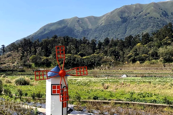 可愛小巧的風車矗立在竹子湖。/玩全台灣旅遊網特約記者單雪攝