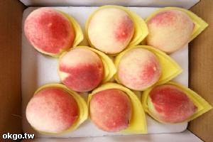 拉拉山的水蜜桃成熟了!快來採果賞美景!