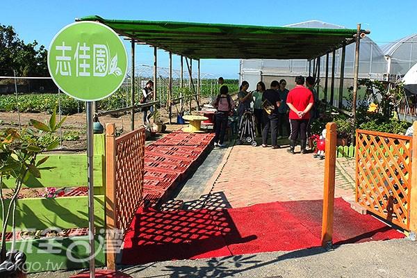 【大手拉小手】體驗一日農夫趣‧來去台南學甲「志佳園」就對了!