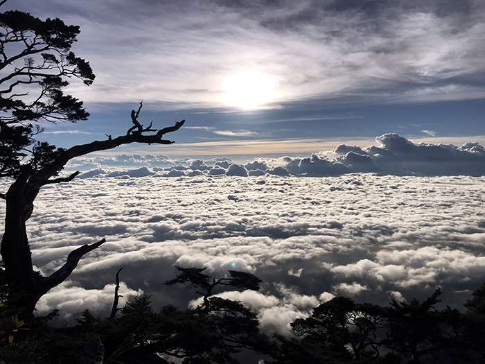【線上旅行】 今天帶大家進入雲的故鄉,讓我們今晚來做浪漫的美夢吧!