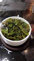 無毒栽培茶葉