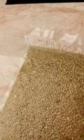 糙米2.4kg裝