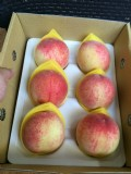 拉拉山,水蜜桃