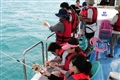 東海漁夫體驗一日遊