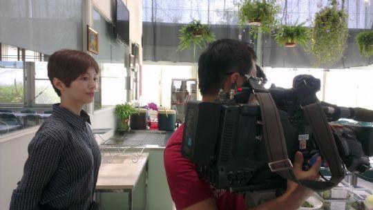 TVBS 一步一腳印 發現新台灣節目