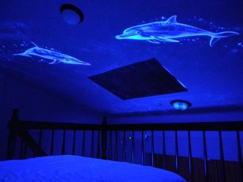 樓中樓天花板上海豚星光彩繪