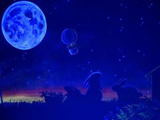 玉兔觀月星空彩繪(可開關)