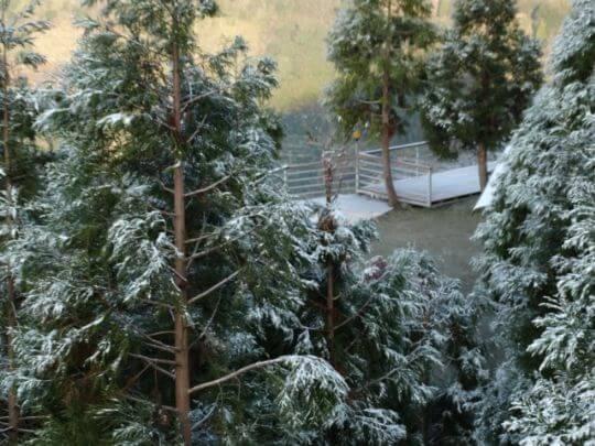 2013.12雲頂雪景 相片來源:拉拉山露營.雲頂休閒露營區