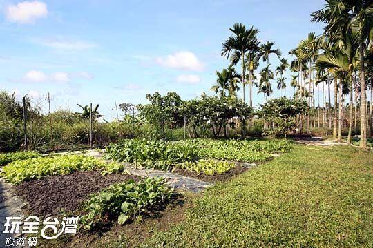 奶奶的菜園 相片來源:屏東民宿.幸福莊園庭園民宿