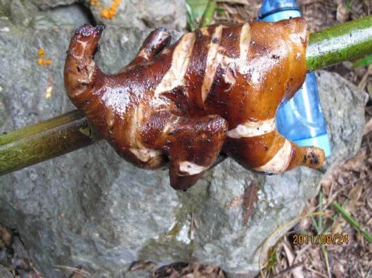 野外求生--烤雞 相片來源:新竹內灣尖石武林帖