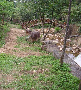 茅埔坑溪步道