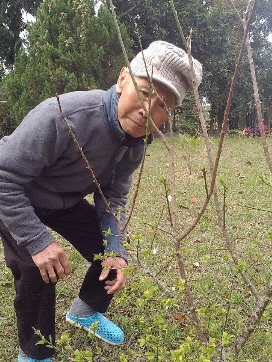 米多綠靈魂人物 相片來源:米多綠森林民宿