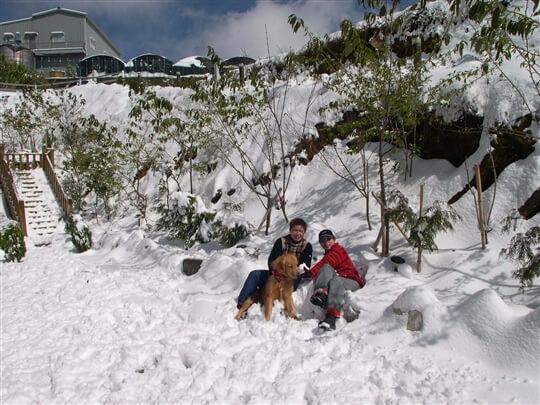 家園雪景 相片來源:清境家園景觀山莊
