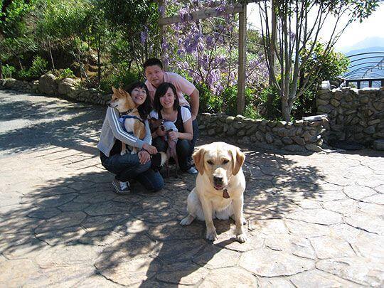 小Q&小乖找小米合影  相片來源:清境家園景觀山莊
