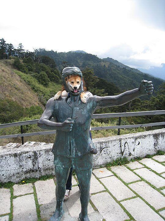 小Q 鐵甲武士NO.1 相片來源:清境家園景觀山莊