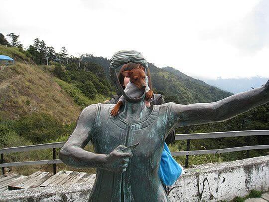 小乖鐵甲武士NO.1 相片來源:清境家園景觀山莊
