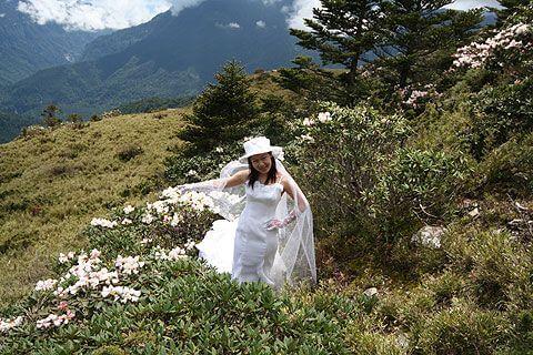 清境家園 相片來源:清境家園景觀山莊