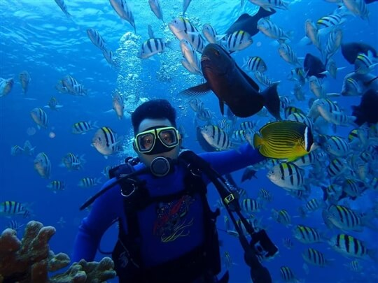 體驗潛水 相片來源:綠島TORO觀海民宿