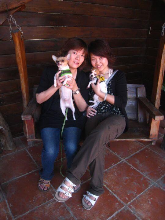 2010.11.1沈小姐2人+2狗入住樹屋 相片來源:墾丁寵物民宿.哈CHEESE