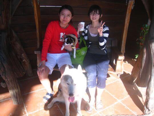 2010.11.27陳小姐2人+1狗入住樹屋 相片來源:墾丁寵物民宿.哈CHEESE