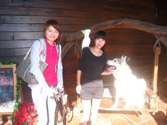 2010.12.19施小姐2人+1鳥入住樹屋 相片來源:墾丁寵物民宿.哈CHEESE