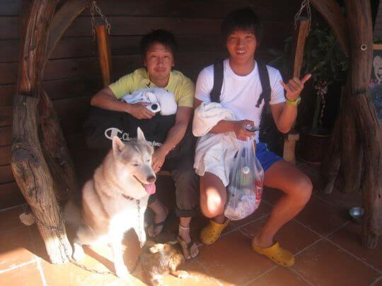 2011.5/1~5/3日本人3人入住通鋪 相片來源:墾丁寵物民宿.哈CHEESE
