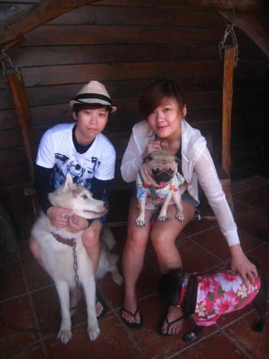 2011.6/30曾小姐2人+2狗入住蛋屋 相片來源:墾丁寵物民宿.哈CHEESE