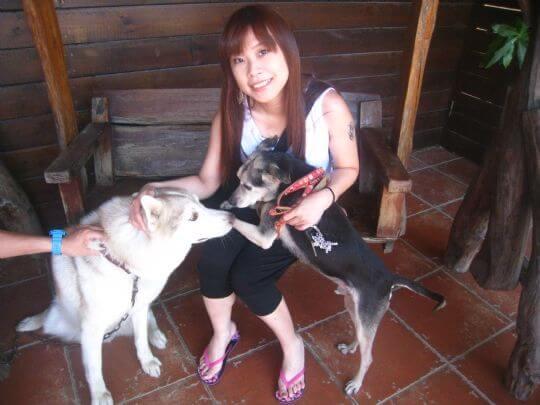2011.7/4~5呂小姐1人+1狗入住蛋屋 相片來源:墾丁寵物民宿.哈CHEESE
