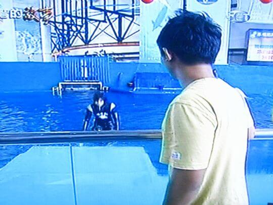 很帥氣的駕著白鯨從水底上岸 相片來源:墾丁寵物民宿.哈CHEESE