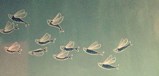 ◆ 相片來源:蘭嶼好望角渡假村