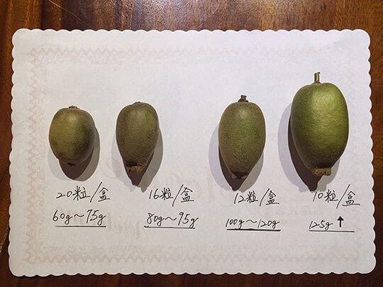 阿公的黃金傳奇 相片來源:清境‧維也納庭園木屋