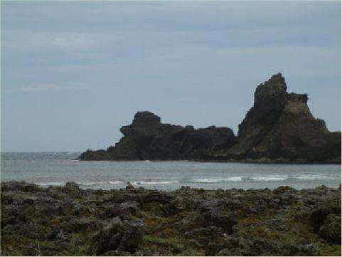綿羊岩 又稱為貴賓狗岩,位於柚子湖海域附近,在岸邊仔細觀察就可以發現。 相片來源:綠島長泰海景民宿