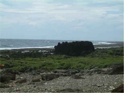 家豬岩 位於溫泉村火雞岩附近,遠看彷彿家豬在海邊喝水一樣。 相片來源:綠島長泰海景民宿