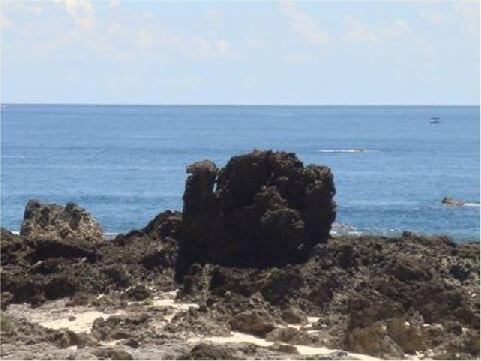 火雞岩- 位於綠島鄉境內,綠島因長年受風化與海水侵蝕,形成許多造型特別的岩石,人們以其造形來命名。 相片來源:綠島長泰海景民宿