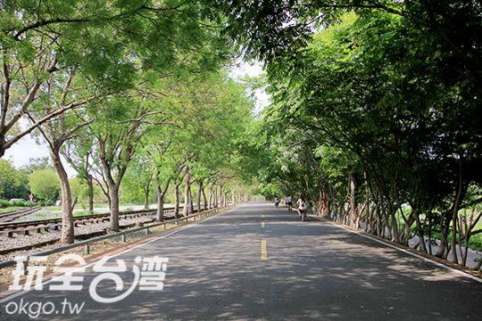 東豐鐵馬綠廊