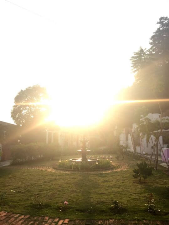 阿喜紫藤下午茶花園
