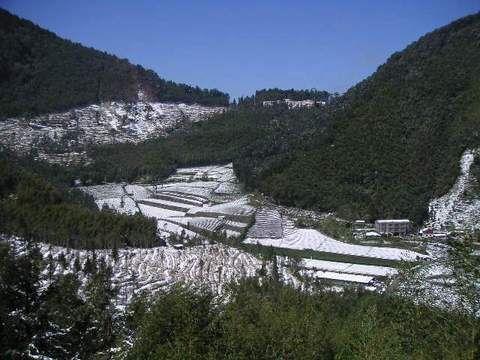 瑞里百年第一次雪-94年三月雪 相片來源:瑞里茶壺民宿