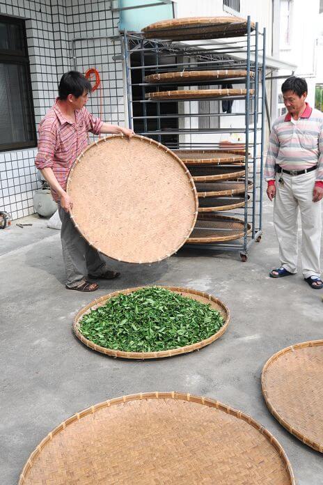 金萱紅茶DIY製作 相片來源:瑞里茶壺民宿