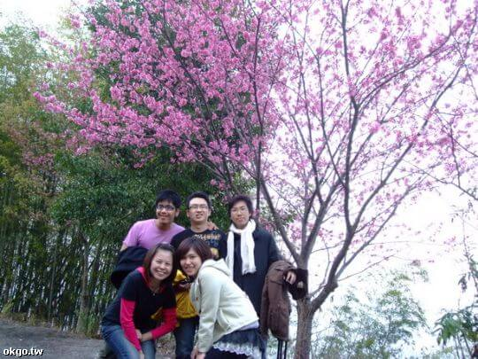 賞花篇 相片來源:瑞里幼葉的林民宿