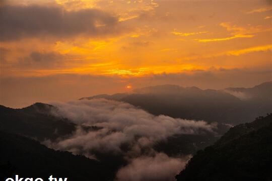 相片來源:瑞里印象民宿