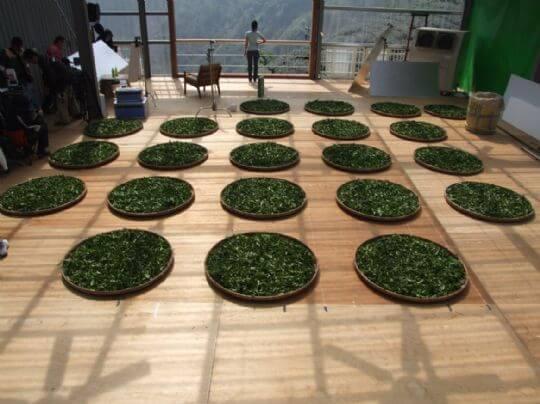 三棧坪製茶廠3樓的拍攝現場 相片來源:竹山天梯山林瓦舍民宿